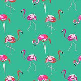 Hand drawn pink flamingo bird mint seamless pattern.
