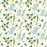 Herbs seamless pattern. Parsley, dill, razmarin endless background, texture. Vegetable backdrop. Vector illustration.