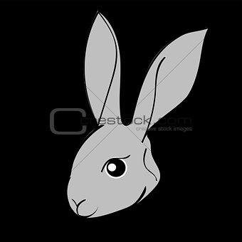 Grey easter rabbit black background Animal