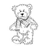 Drawing Teddy Bear with scarf. Vector illustration