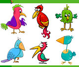 fantasy birds cartoon set