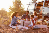 Family having a picnic beside their camper van, full length