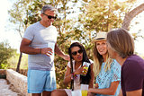 Two adult couples socialising outdoors, Ibiza, close up