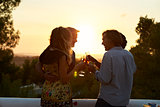 Two couples on a rooftop making a toast at sunset, low light