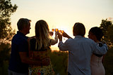 Two couples on a rooftop making a toast at sunset, back view