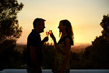 Adult couple making a toast on a rooftop at sunset, side view