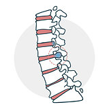Herniated intervertebral disc icon