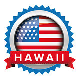 Hawaii and USA flag badge vector