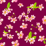 Pink cherry sakura flower blossoms seamless pattern
