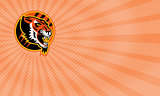 Tiger Athletics Business card
