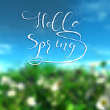 Hello spring background