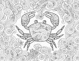 Coloring page. Ornate crab and sea wave curl background.