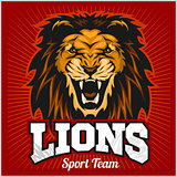 Lions - sport team logo template. Lion head on the shield. T-shirt graphic, badge, emblem, sticker.