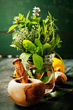 Herbs and spices with Mortar and Pestle