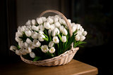 White tulips, bouquet in basket.