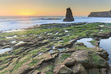 Davenport Rugged Coastline Sunset