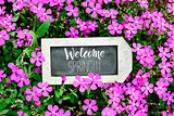 chalkboard with the text welcome spring