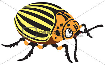 cartoon potato beetle