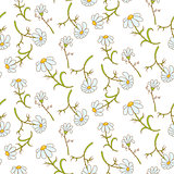 Daisy light blue seamless pattern.