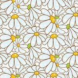 Chamomile light blue seamless pattern.