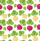 Radish seamless pattern. Red and white radishes endless background, texture. Vegetable . Vector illustration