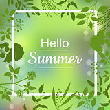 Hello Summer green card