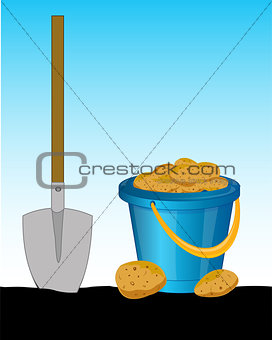 Pail of the potatoes and shovel