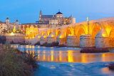 Night Mezquita and Roman bridge in Cordoba, Spain