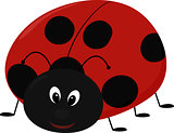 Vector illustration of cartoon Lady bug