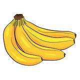 Cartoon Doodle of Banana
