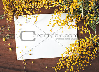 Greeting card with mimosa