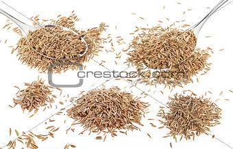 Cumin seeds isolated on white background