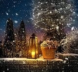 First snowfall in winter garden