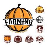 Isolated orange color pumpkin logo set on white, autumn vegetable logotype collection, stylized globe vector illustration