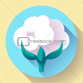 Flat Cotton icon vector