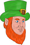 Leprechaun Head Three Quarter View Drawing
