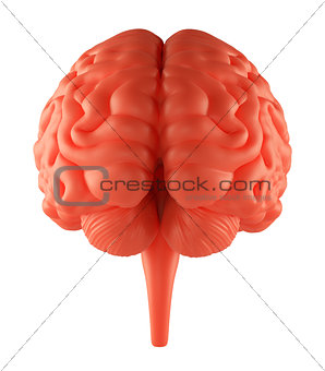 Anger Red Brain