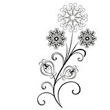 vector flowers flourishes