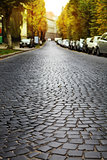 empty cobblestone road