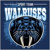 Vector Walrus logo template for sport teams, business etc.