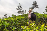 Female tourist enjoying beautiful nature of tea plantations, Sri Lanka.