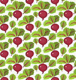 Beet seamless pattern. Beetroot endless background, texture. Vegetable backdrop. Vector illustration.