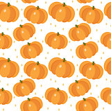 Pumpkin seamless pattern. Gourd, endless background, texture. Vegetable backdrop. Vector illustration.