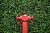 Closeup photo of fire hydrant