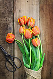 Antique Scissors and Bouguet of Tulips