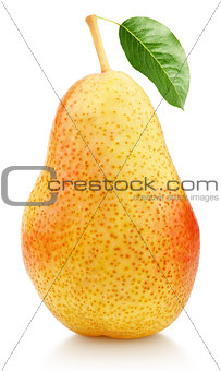 Single sweet red pear fruit