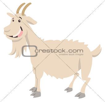 goat farm animal character