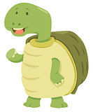 cartoon turtle animal character