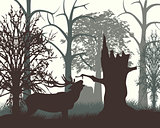 Deer in wood in the morning