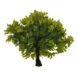 Tree oak clip art